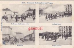 88 - Souvenir De Bruyères En Vosges – Le Drapeau Des Chasseurs à Pied,,,,,,,,,,, - Bruyeres