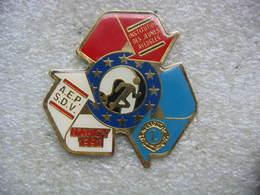 Pin's Course à Pieds Avec L'Institut Des Jeunes Aveugles, AEPSDV Club De Sport De Nancy Et Le Lion's Club - Associations
