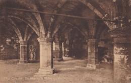 AM47 The Crypt, St. Mary's Abbey, York - York