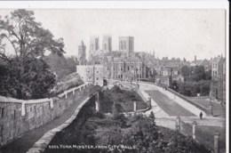 AM47 York Minster From City Walls - York