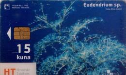 CROACIA. FAUNA MARINA. Eudendrium Sp. TK 03/03. (001). TRANSPARENTE. - Tarjetas Telefónicas