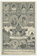 Famille Gd Ducale De Luxembourg Tableau Genealogique 1917 - Grand-Ducal Family