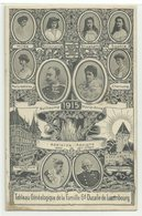 Famille Gd Ducale De Luxembourg Tableau Genealogique 1917 - Familia Real