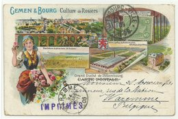 Gemen & Bourg Culture De Rosiers Luxembourg Litho 1905 Nach Belgien RR!! - Postales