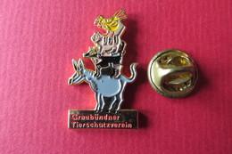 Pin's,Animaux,ANE,CHIEN,CHAT,COQ,Graubündner Tierschutzverein,Suisse - Animaux