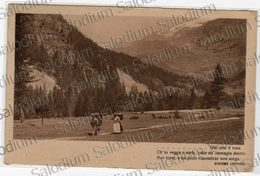 1913 - Agricoltura  Animata Frase Versi Poesia Giacomo Leopardi Montagna Alpi Trentino Alto Adige? Bolzano ? - Agricoltura