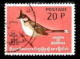 BIRMANIE 96° 20p Rose Et Brun Série Courante Oiseaux Endémiques Pycnonote (10% De La Cote + 0,26) - Myanmar (Burma 1948-...)