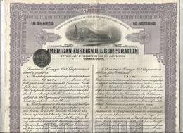 10 Actions , American Foreign Oil Corporation ,  Virginia 1920,  2 Scans , Frais Fr 1.95 E - Shareholdings