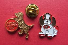 2 Pin's,Animaux,CHIEN,JUGEND UND HUND SKG,SUISSE - Animaux