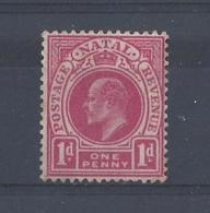 NATAL......KING EDWARD VII.(1901-10).....1d.....SG128....( CAT £13....)....MH... - Sud Africa (...-1961)