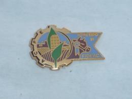 Pin's FOIRE EXPO DE FIGEAC 1991 - Villes