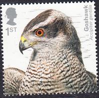 Birds Of Prey (2019) - Northern Goshawk (Accipiter Gentilis) 1st SG4206 - 1952-.... (Elizabeth II)