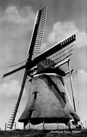 Windmolen Molen Windmill Moulin à Vent    Nes Op Ameland Waddeneilanden  Friesland Korenmolen De Phenix     L 623 - Windmolens