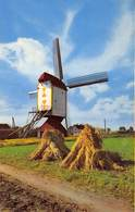 Windmolen Molen Windmill Moulin à Vent    Baexem Limburg      L 624 - Windmolens