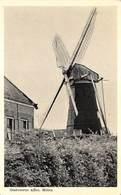 Windmolen Molen Windmill Moulin à Vent Oostvoorne Aan Zee  Molen      L 629 - Windmolens