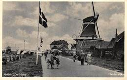 Windmolen Molen Windmill Moulin à Vent  Harderwijk   Molen De Hoop       L 634 - Windmolens