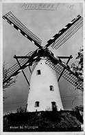 Windmolen Molen Windmill Moulin à Vent  Milsbeek  Molen Bij Nijmegen        L 636 - Windmolens