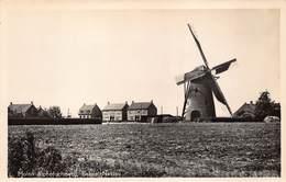 Windmolen Molen Windmill Moulin à Vent  Molen Alphenscheweg Baarle Nassau  Echte Fotokaart    L 642 - Windmolens