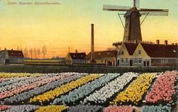 Windmolen Molen Windmill Moulin à Vent  Haarlem  Hijacinthenvelden      L 658 - Windmolens