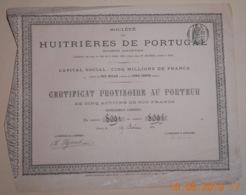 CERTIFICAT PROVISOIRE De 5 ACTIONS - HUITRIERES Du PORTUGAL - 19 Août 1873 - Shareholdings