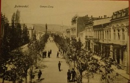 CAMPULUNG MUSCEL,BULEVARDUL CAROL - Moldavië