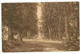 2 - Cambron - Parc De Cambron Avenue Des Tilleuls - Brugelette