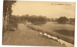 3 - Parc De Cambron - La Dendre - Brugelette