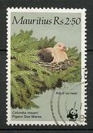 Maurice - Mauritius 1985 Y&T N°633 - Michel N°611 (o) - 2,50r Pigeon Rose - Maurice (1968-...)