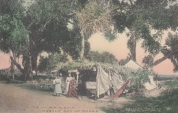 Life In Arizona Mostly Out Of Doors, Bristley Drug Co. Prescott AZ Issued C1900s Vintage Postcard - United States