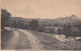 Prescott Arizona, 'On The Murphy Drive', Horse-drawn Wagon On Dirt Road C1900s Vintage Postcard - United States