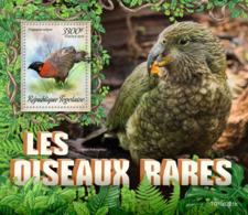 Togo  2019 Fauna   Rare Birds  S201907 - Togo (1960-...)