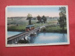 Trolley Bridge Over Walkill River    Middletown     New York >  Ref    3560 - NY - New York