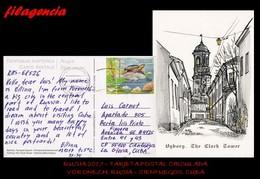 EUROPA. RUSIA. ENTEROS POSTALES. TARJETA POSTAL CIRCULADA 2017. VORONEZH. RUSIA-CIENFUEGOS. CUBA. TORTUGAS - 1992-.... Fédération