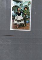 2180  CPA   BRODEE ESPAGNE  NON ECRITE - Arts