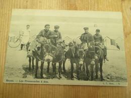 Heyst Les Promenades A Ane 1903 - Knokke