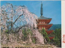 Kyoto-daigoji Tempio - Kyoto