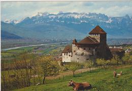 Liechtenstein-schloss Vaduz - Liechtenstein