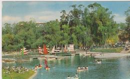 Messico-lago Del Nuevo Bosque De Chapultepec - Messico