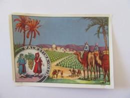 Palestine - Etiquette De Vin Palestinien - Labels