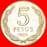 + ANGEL 1973: CHILE ★ 5 PESOS 1980! LOW START ★ NO RESERVE! - Chile