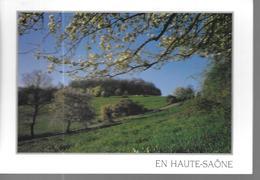 70 Haute Saone Pittoresque - Other Municipalities