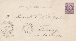 Nederlands Indië - 1886 - 5 Cent Willem III, Envelop G3 Van KR En Puntstempel BUITENZORG Naar Freiberg / Sachsen - Nederlands-Indië