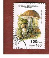 MADAGASCAR -  SG 841  -   1990   MUSHROOMS: LECCINUM SCABRUM    -  USED° - Madagascar (1960-...)