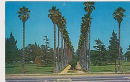 California-Long Beach - Long Beach