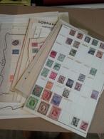Lot N° 745 MONDE Un Bon Lot Sur Pages D'albums Neufs* Ou Obl. - Briefmarken