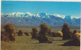 Death Valley - Altri