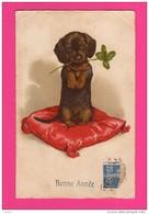 CPA (Réf : VV417) (Animaux & Faune Chien) Coussin Trèfle 4 Feuilles, Bonne Année Caniche - Cani