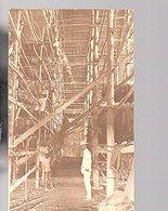 Netherlands Indies Tabacco Industry Medan ± 1915 VERY Sharp Private Photo Card    (19-13) - Indonésie