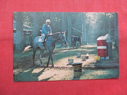 Saratoga Track   Exercise Boy Prepares Horse For A Workout >  Ref    3561 - Other