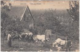 28481g  FERME  - Beersel - Beersel